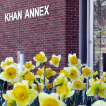 entrance of Khan Annex with daffodils in the foreground